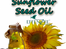 Sunflower Seed Oil – Kelebihan EFFENZEE
