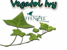 Vegatol Ivy – Kelebihan EFFENZEE