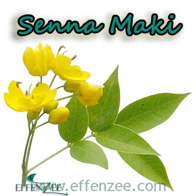 Senna Maki – Kelebihan EFFENZEE
