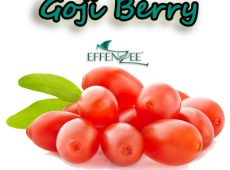 Goji Berry – Kelebihan EFFENZEE